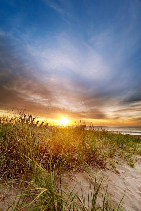 Zon op de horizon bij strand stock afbeeldingen