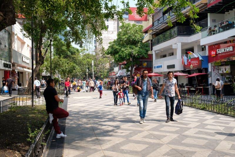 Zona罗莎,一个充满活力的世界性邻里在墨西哥城 免版税库存图片