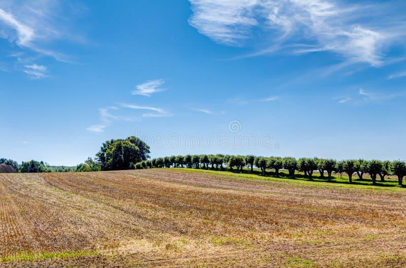 Zona agícola em Alemanha imagem de stock