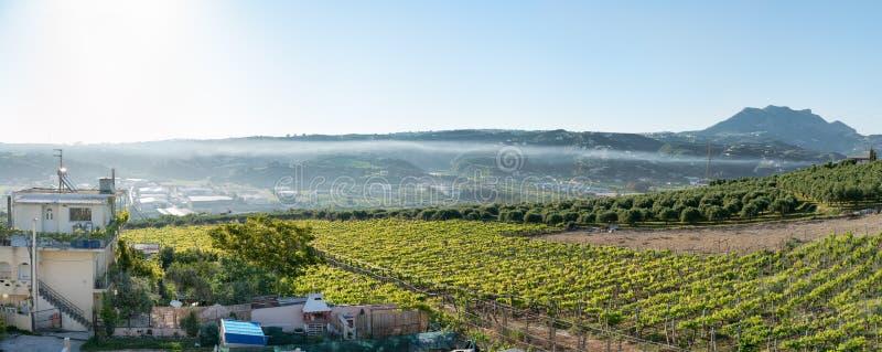 Zona agícola na Creta foto de stock