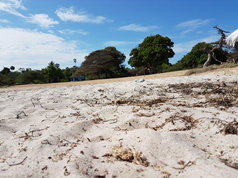 Zona costiera fotografie stock