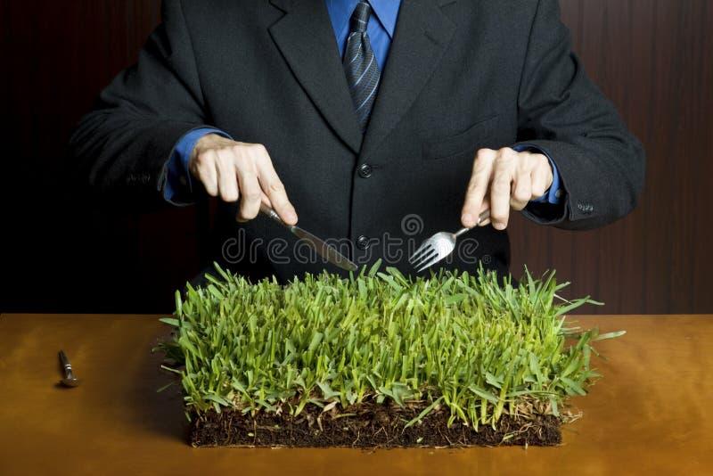 Zona di erba su una tabella immagini stock