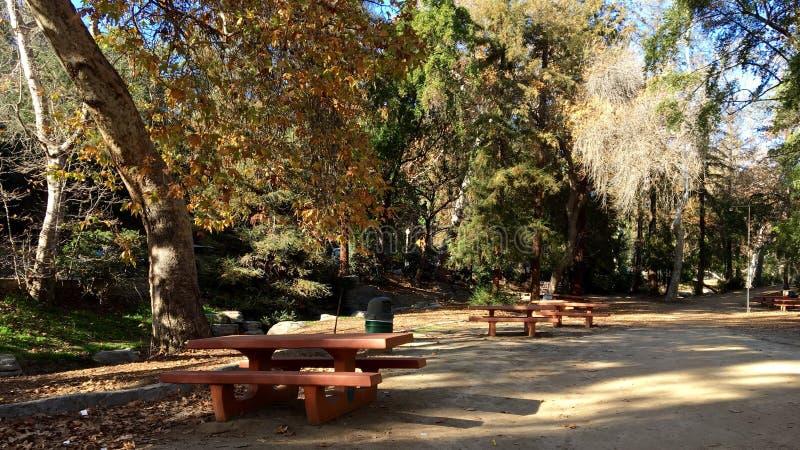 Zona di picnic esterna immagine stock libera da diritti