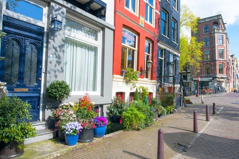 Zona residenziale di Amsterdam giù nella città con i fiori naturali fuori delle costruzioni netherlands immagini stock libere da diritti