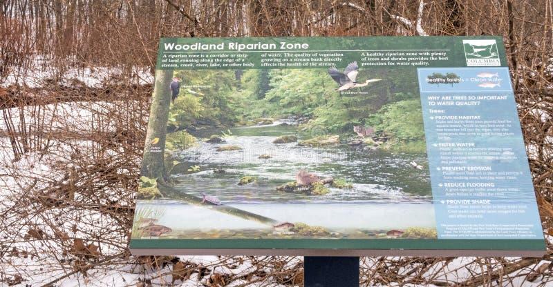 Zona rivierasca del terreno boscoso descrittivo del segno fotografia stock libera da diritti