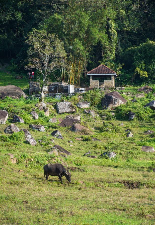 Zona rural en el kotmale, Sri Lanka fotografía de archivo