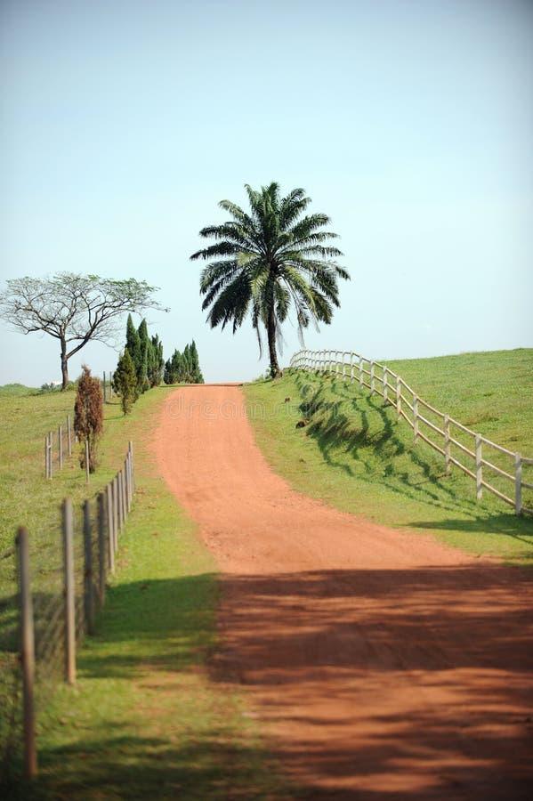 Zona rurale fotografia stock