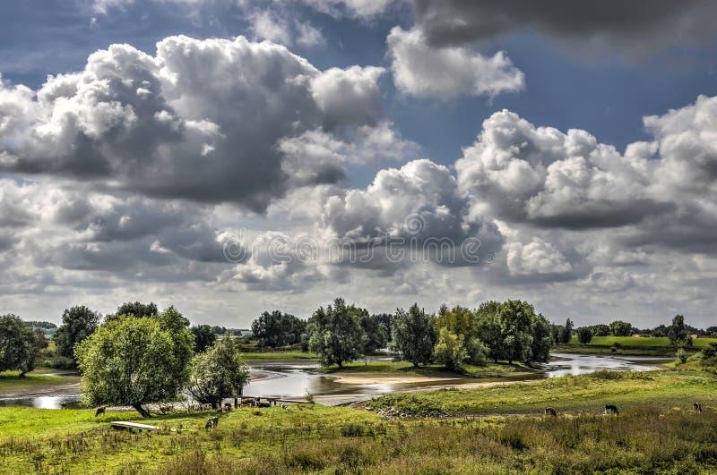Zona sujeitas a inundações do rio Waal imagem de stock royalty free