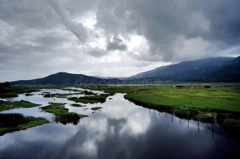 Zona umida di Beihai fotografie stock libere da diritti