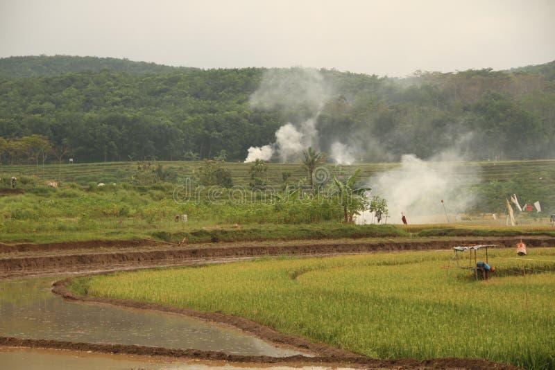 Zona verde ahumada fotografía de archivo