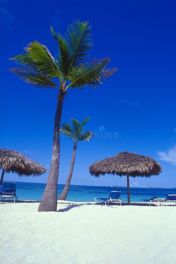 Zonas tropicales 02 de Bahamas fotos de archivo libres de regalías