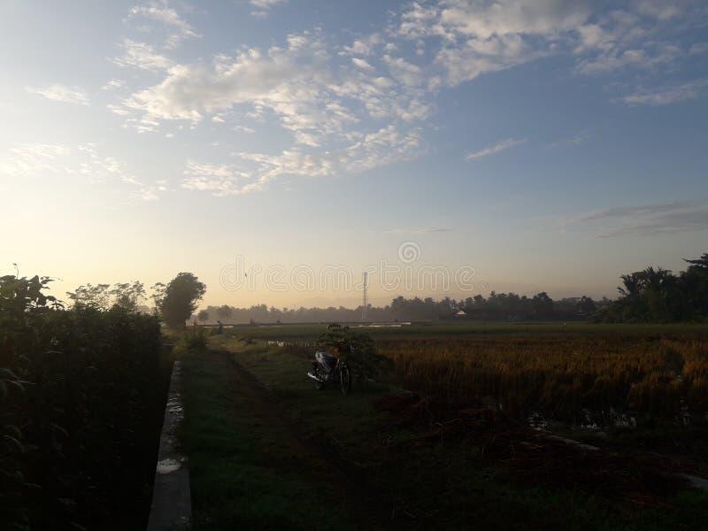 Zondag ochtend met blauwe hemel royalty-vrije stock foto