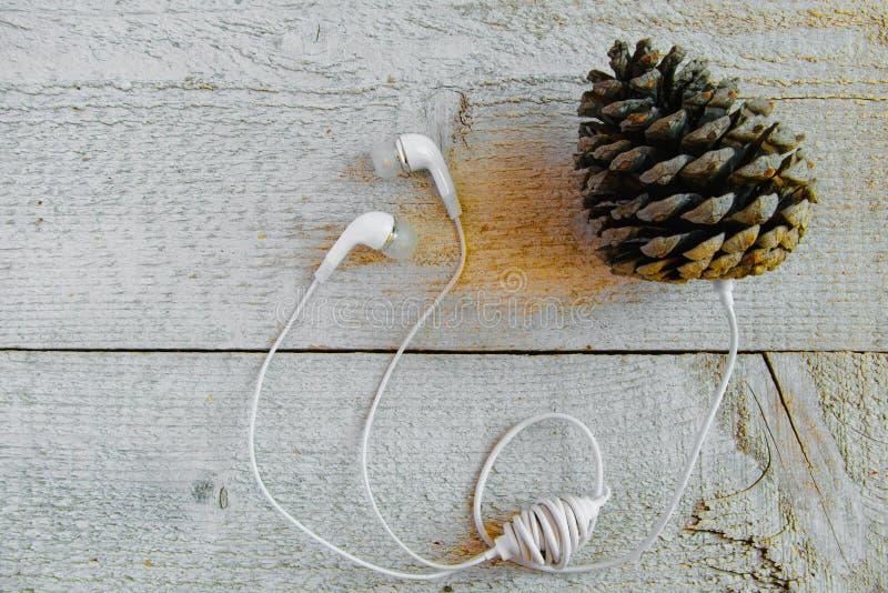 Zonderlinge manier te luisteren muziek Concepten - verbinding in de aard, verschillend perspectief om de technologie, verbeelding royalty-vrije stock fotografie