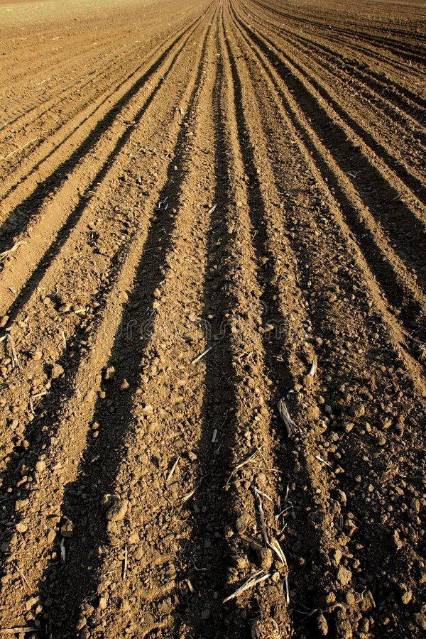 Download Zone photo stock. Image du ground, agriculture, endless - 740014