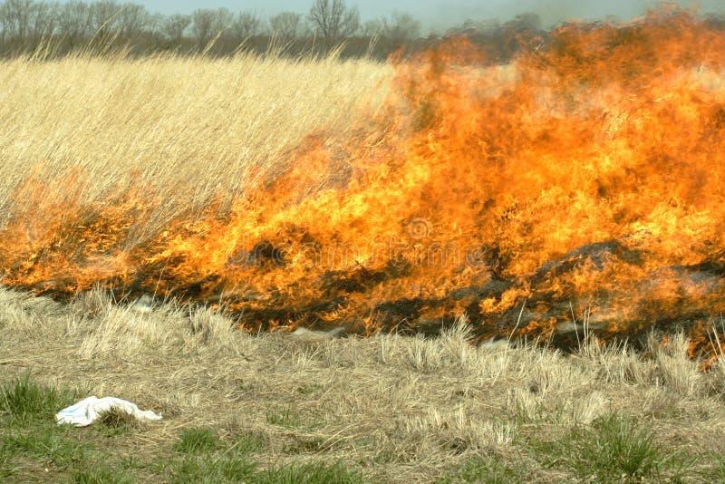 Zone brûlante d'herbe image libre de droits