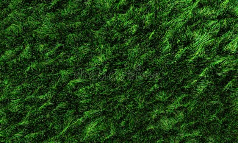 Zone d'herbe illustration stock
