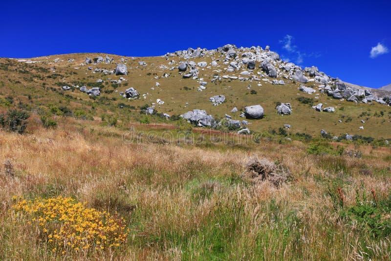 Zone d'herbe avec le fond de roche et de montagne image stock