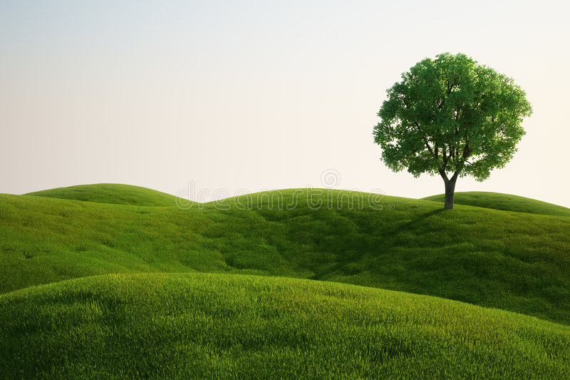Zone d'herbe avec un arbre illustration stock