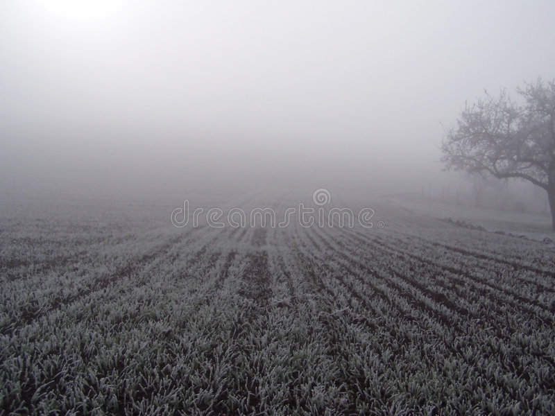 Zone Dans Le Regain. Images stock