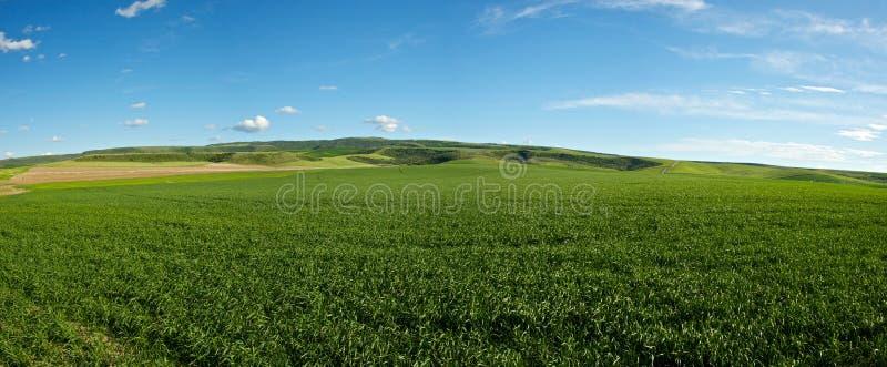 Zone de ferme de l'Idaho photos stock