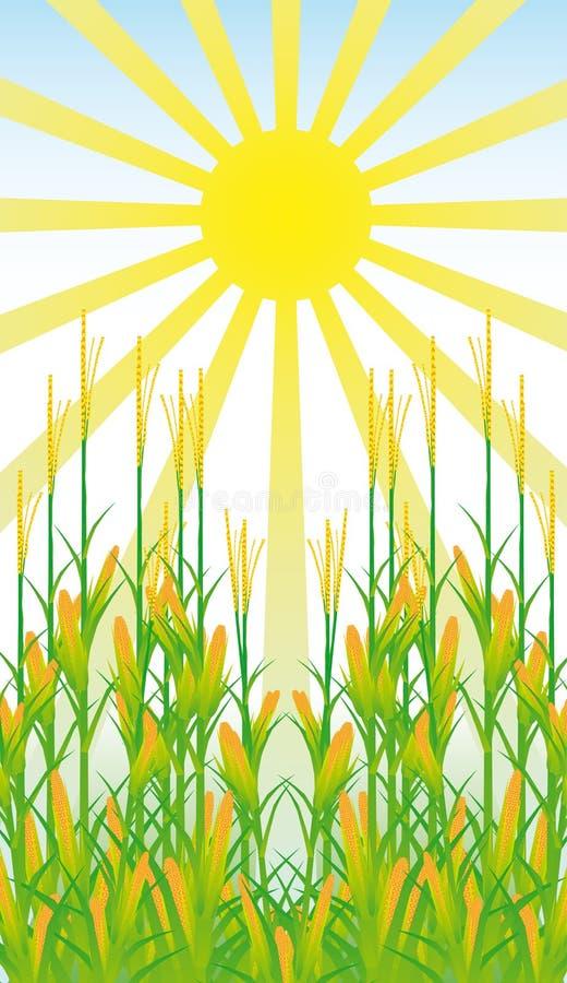 Zone de maïs illustration de vecteur