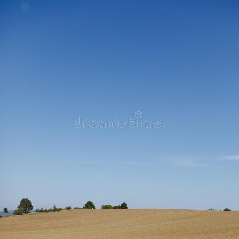 Zone de maïs et ciel bleu image stock