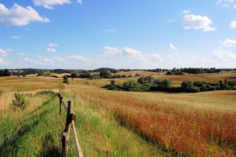 Zone de Masuria près d'Olecko, Pologne photo libre de droits