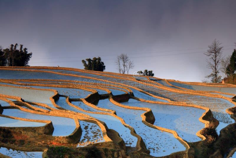 Zone de terrasse image libre de droits