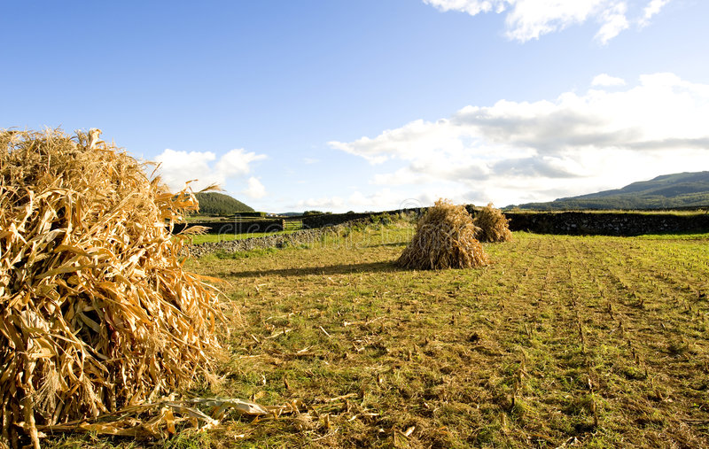 Zone des Açores photo libre de droits