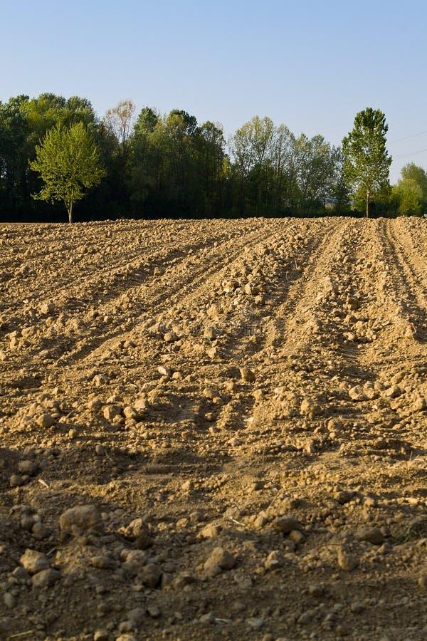 Zone des terres arables photo libre de droits