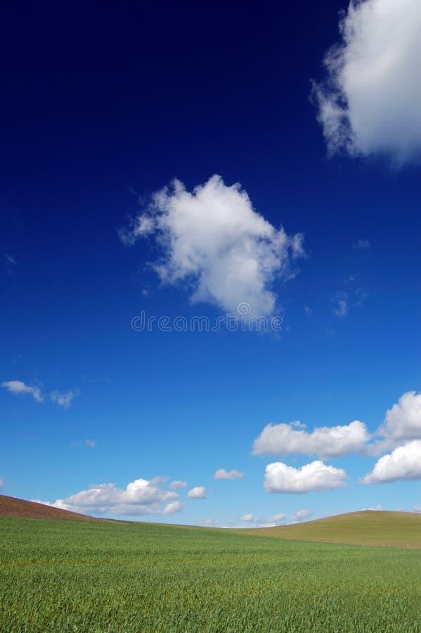 Zone et ciel image stock