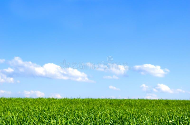 Zone et ciel bleu photographie stock libre de droits