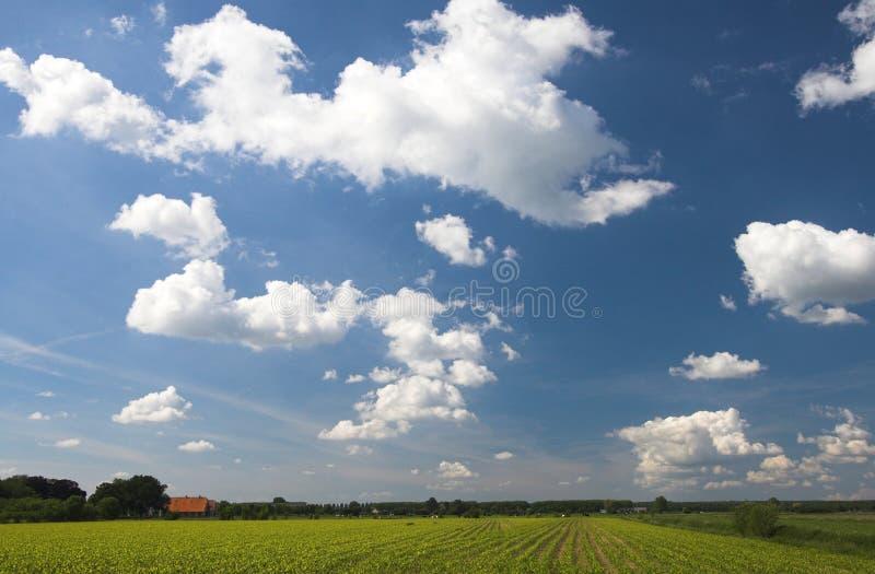 Zone et nuages images libres de droits