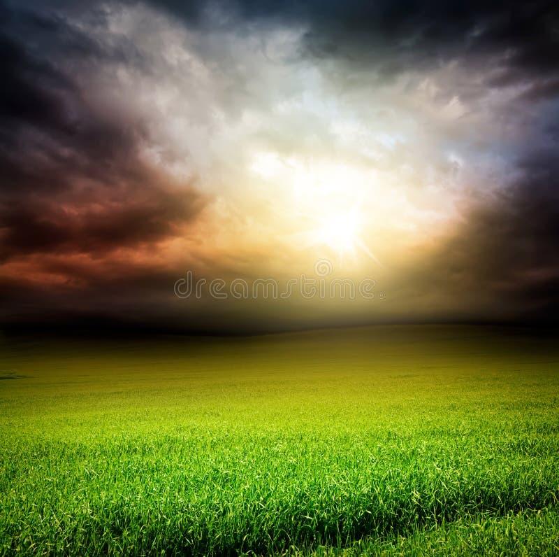 Zone foncée de vert de ciel d'herbe avec la lumière du soleil photographie stock libre de droits