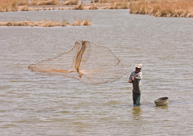 zone humide de la Gambie de pêcheur image stock