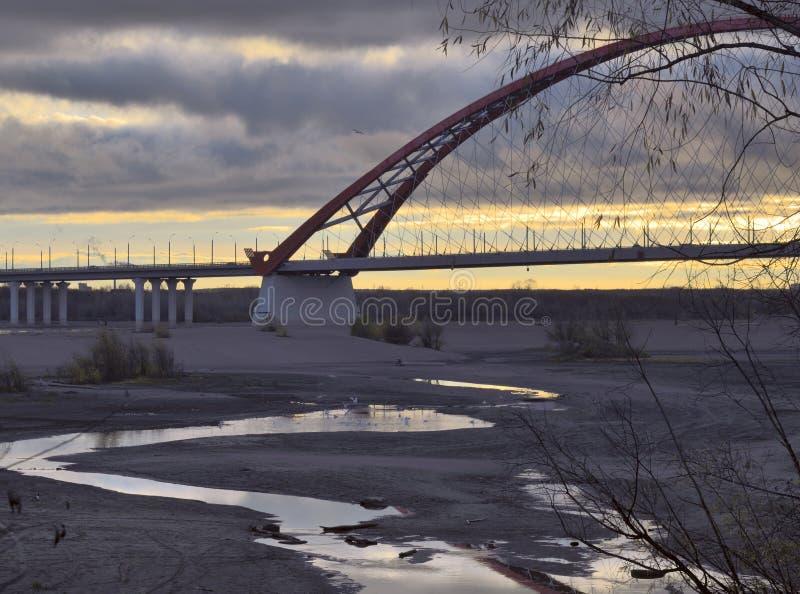 Zone inondable d'Obi avec le pont de Bugrinsky photographie stock libre de droits