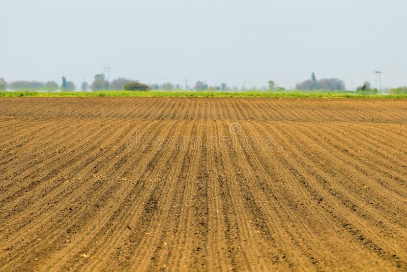 Zone semée Champs agricoles au printemps Cultures d'encemencement photos libres de droits