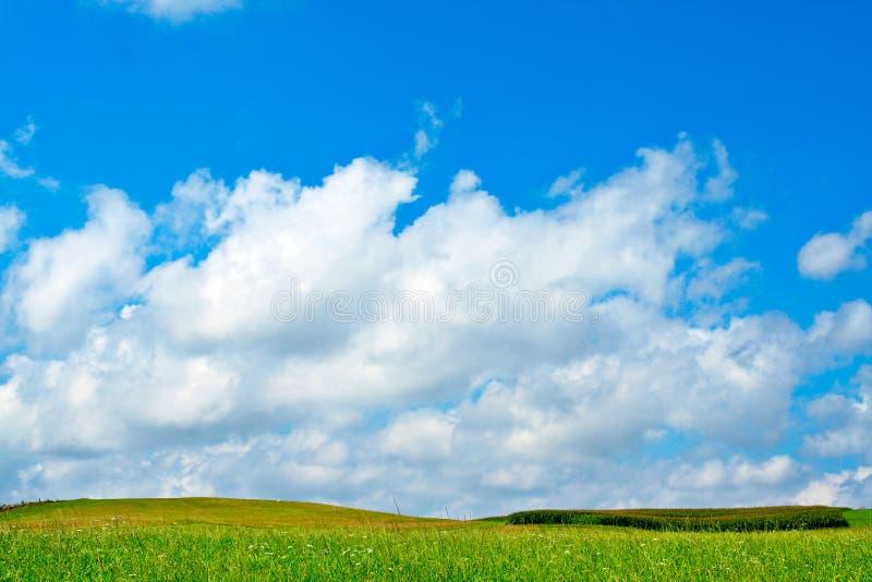 Zone verte, ciel bleu et nuages blancs photographie stock