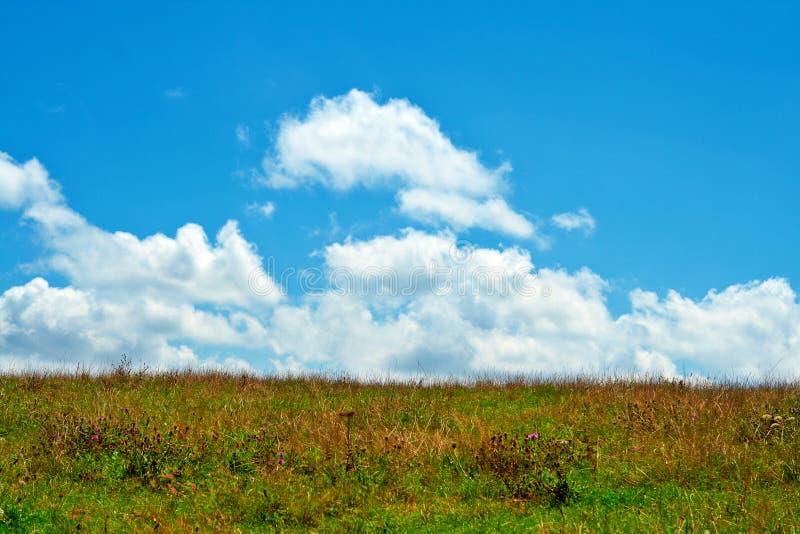 Zone verte, ciel bleu et nuages blancs image stock
