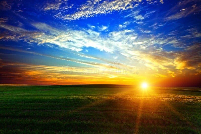 Zone verte et beau coucher du soleil image stock