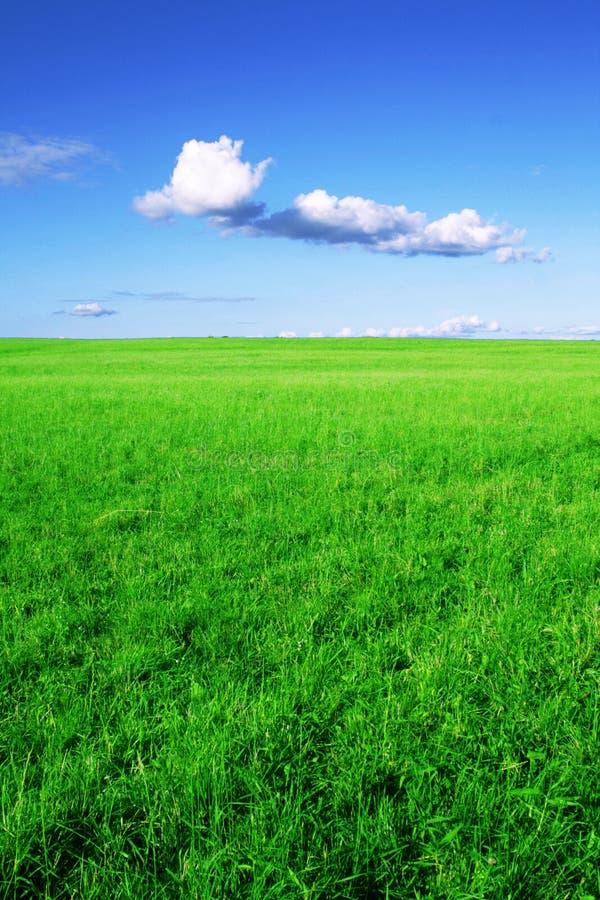 Zone verte et ciel bleu. photo stock