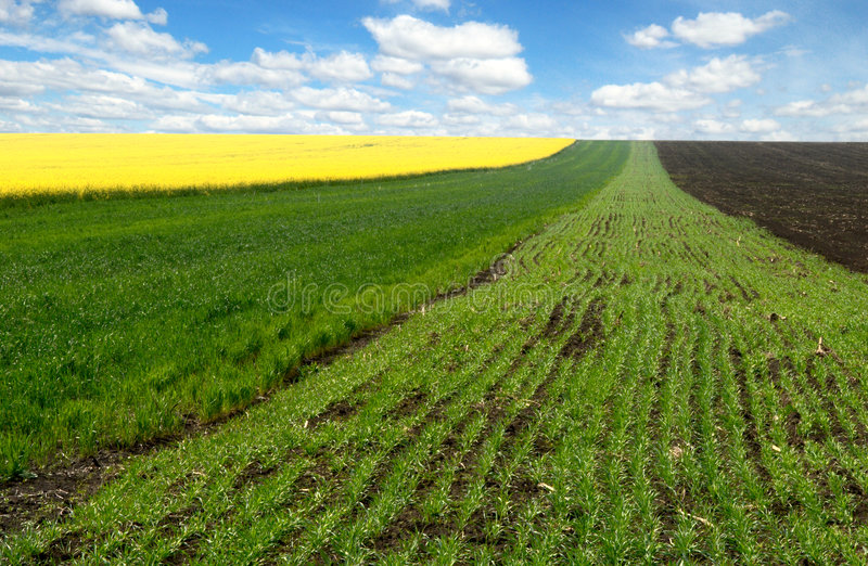Zones d'agriculture de source image stock