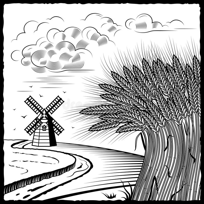 Zones de blé noires et blanches illustration libre de droits