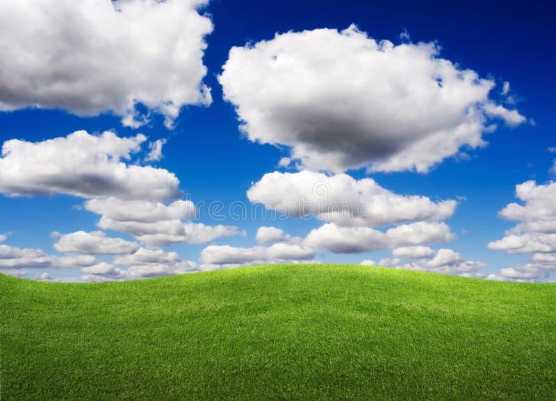 Zones de vert d'horizontal d'été et beau ciel photos stock