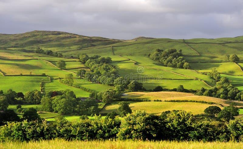Zones et prés, Cumbria images stock