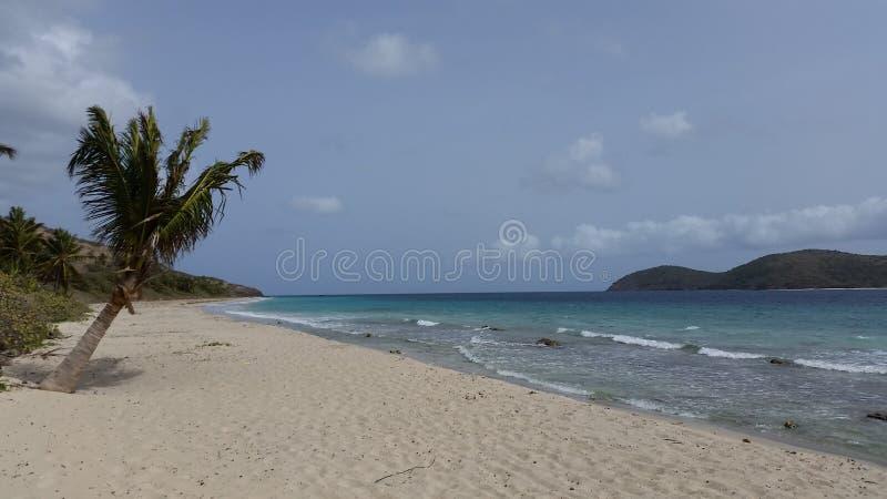 Zoni海滩, Culebra P r 免版税库存图片