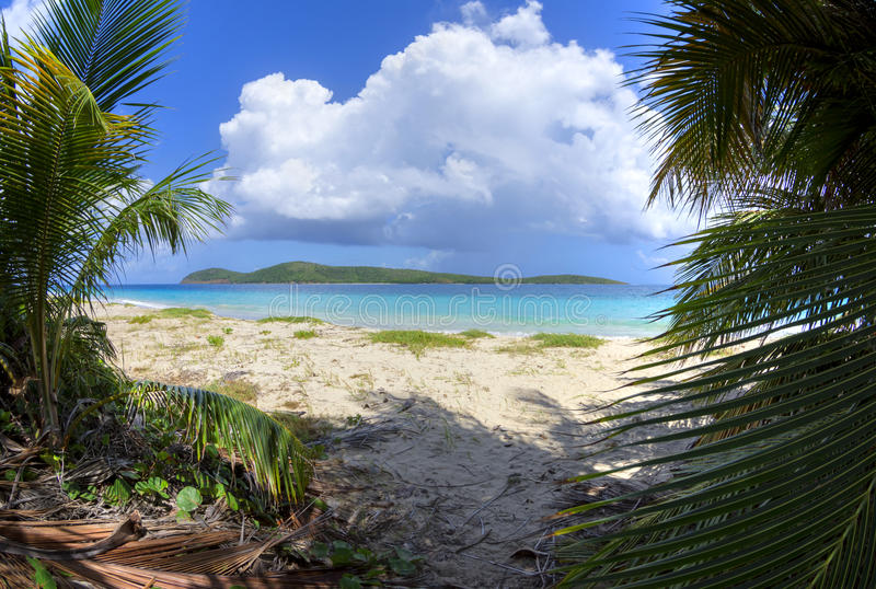 Zoni Beach and North Cay. Wide angle view from among coconut palms on Zoni Beach with turquoise blue Caribbean water and North Cay off shore on Isla Culebra on a stock photo