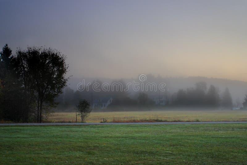 Zonlicht die door mistige bomen op een de herfstochtend wegschieten royalty-vrije stock fotografie