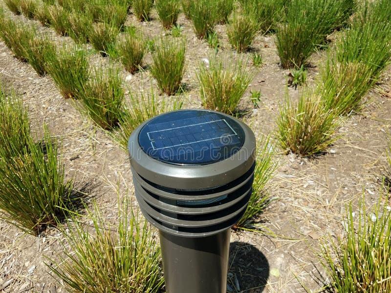 Zonne aangedreven licht met groene grassen in de grond royalty-vrije stock afbeelding