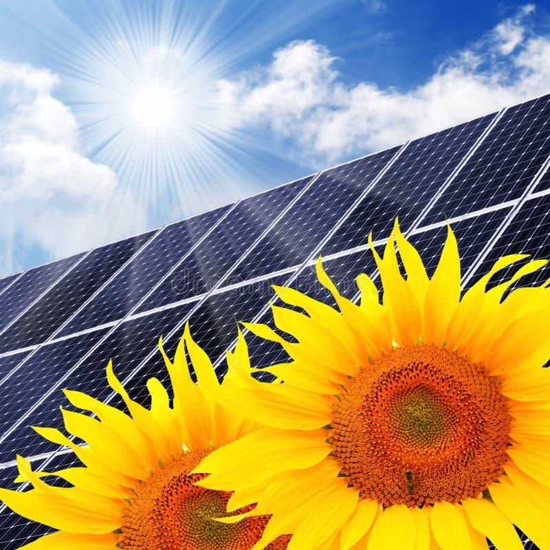 Zonne-energiepaneel en zonnebloemen. vector illustratie